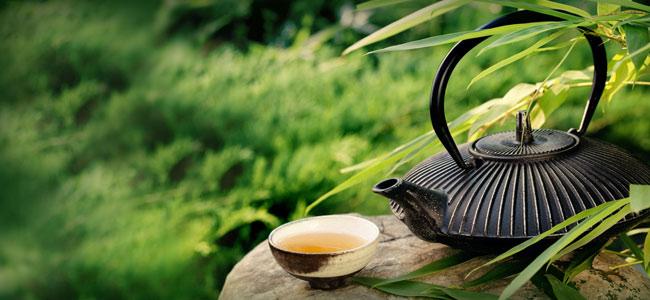 L'art de l'infusion du thé
