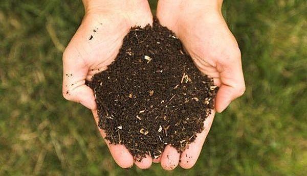 Le compost : un processus naturel qui fait ses preuves